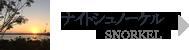 石垣島ナイトシュノーケル